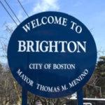 Brighton MA Pest Control A1 Exterminators