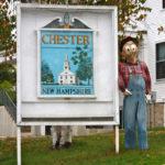 Chester NH Pest Control A1 Exterminators