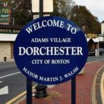 Dorchester, MA Pest Control A1 Exterminators