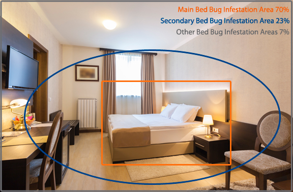 A1 Exterminators how to check for bed bugs