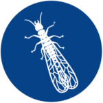 A1 Exterminators Termite Pest Control