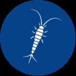 Silverfish Pest Control A1 Exterminators