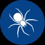 Spider Control A1 Exterminators